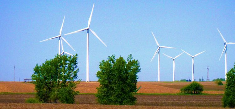 5 reasons why a wind farm development can be a complex transaction